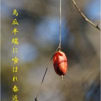 春近し(写真俳句)と「鷹羽狩行の『添削のポイント』抄」