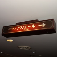 TERRASSE��PARIER��Ļ�踩Ļ��Ժ�Į���ۥƥ�˥塼��������Ļ�����