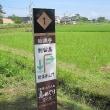 秋田県にかほ市: 象潟