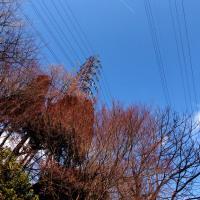 あっ!飛行機雲♪ by 空倶楽部 & ぼくのそらくらぶ
