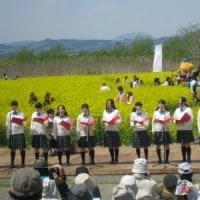 角田菜の花まつり