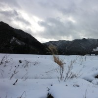 雪景色取材(徳佐へ)
