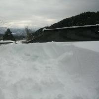 物置の雪落とし