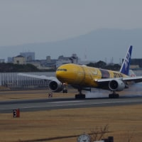 幸せの黄色い飛行機?(後編その2)
