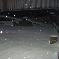 雪かきが無駄になってしまった…。