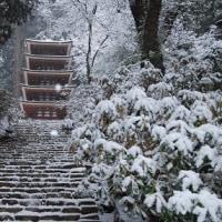 冬の室生寺