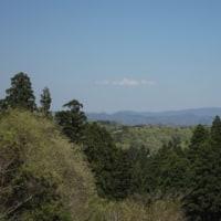 24日に春の味覚を求めて、低いお山に行って来ました。NO.1