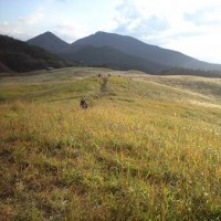 今日は奈良県の東の端から