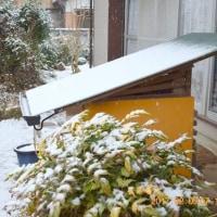 2月9日朝 当地方は雪でした。 朝の間だけでした。 稀勢の里横綱凱旋