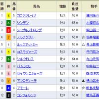 【コンフォルツァ】脱力感の。。 函館6R 3歳未勝利・12着