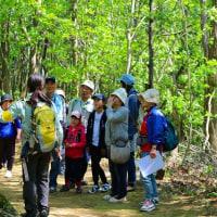 5月4日は「緑に親しむ集い」