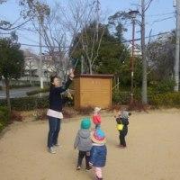 ひよこぐみ⭐️公園遊び