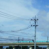 家の近くで、新幹線を!。