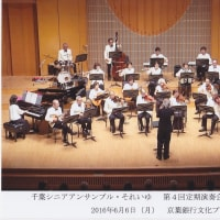 CSE・それいゆ Newsletter 20160627