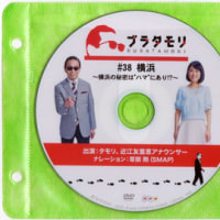 """ブラタモリ・#38 横浜 ~横浜の秘密は""""ハマ""""にあり!?~"""