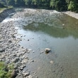 今日の那賀川上流