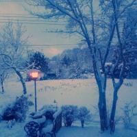 那須高原の雪 真っ白です 重たい雪