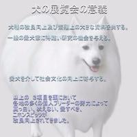 先人たちが つくりあげた日本犬 ニホンスピッツ