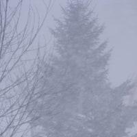 吹雪の一日