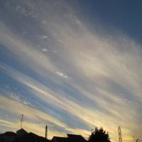 空が綺麗・・・・