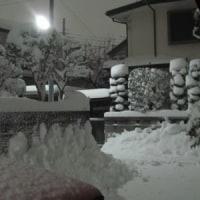 とんでもない大雪