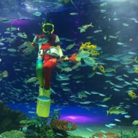 バレンタインは水族館デート。