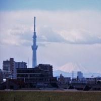 skytreeと富士