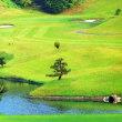 空梅雨 畑の水やり  連ちゃんゴルフ タートルエース  ロイヤルカントリー