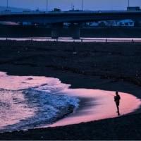23/Jun 湘南海岸の夕景とセミの幼鳥