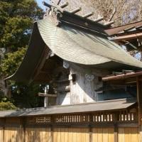 千葉県東庄町、小南小野神社の大イチョウです!!