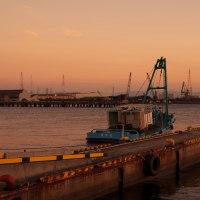 薄暮の南港