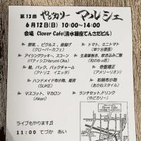 6/12(日)ライブ告知