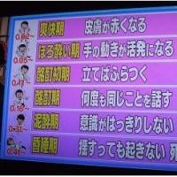 年末・年始 恒例のお遊びで~す(*^_^*)
