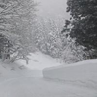 世界遺産・ドカ雪降る白川郷 30