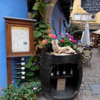 アルザス地方の可愛い街リクヴィル