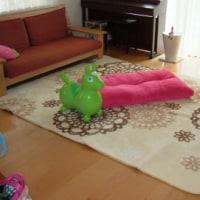 H23 リビングの絨毯♪♪