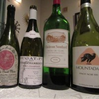 保守本流のワインとナチュールとニッポンワインは並びうるのか?