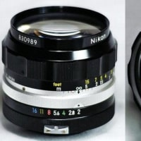 【第613沼】NIKKOR-O Auto 35mm F2 後期型
