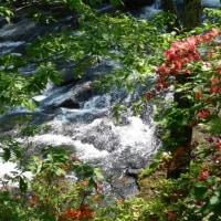 (3)竜頭の滝
