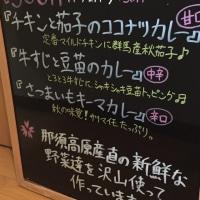 今週のメニュー予告〜