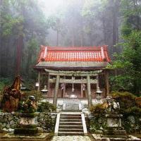 高天彦神社  2010.11.13    Archives