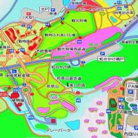 豊田市・鞍ヶ池公園