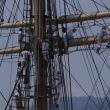 神戸帆船フェスティバル