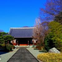 越後屋の菩提寺で「三井寺」と呼ばれている「天羅山真盛寺」