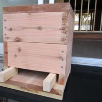 養蜂の話…その1『バスターズ古民家塾』