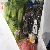 経絡ヨガとオーガニック野菜