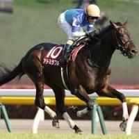 青葉賞2017 混戦の3歳牡馬戦線に新星現る!アドミラブルが3連勝で重賞初勝利!