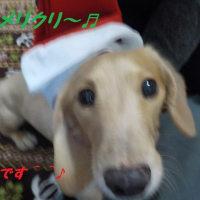 愛知県内でも、初めての往診「市町村」でした^^・・・