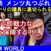 【KSM】蓮舫代表の街頭演説が『世にも悲惨な結果を迎えて』メンツは丸潰れ。恩を仇で返した!と恨み節も漏れる