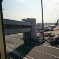 飛行機❤ヤマト